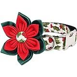 Collar de perro de moda útil con hebilla de metal para gatos grandes y pequeños, accesorios para mascotas (color: collar de flor, tamaño: S (20 30 cm de longitud))