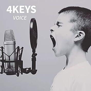 Voice (Master-Edition)
