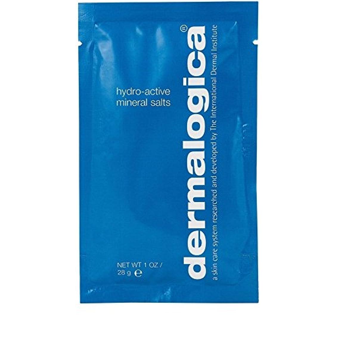 振動する領収書最少ダーマロジカ水力アクティブミネラル塩28グラム x4 - Dermalogica Hydro Active Mineral Salt 28g (Pack of 4) [並行輸入品]