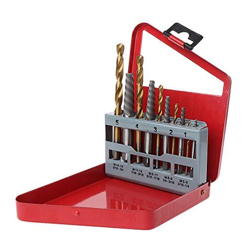 Viesky - Juego de 10 piezas de extractores de tornillos para mano derecha, caja de almacenamiento de metal, portátil, resistente al desgaste