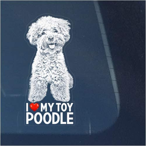 I Love My Toy Poodle Clear for Decal Vinyl Minia Window New Free Shipping Free Shipping New Sticker
