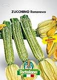 Sementi orticole di qualità l'ortolano in busta termosaldata (160 varietà) (ZUCCHINO ROMANESCO)