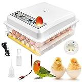 TELAM Incubadoras eléctricas de huevos 16 huevos, mini incubadora doméstica automática con aleta, de huevos giratoria automática para huevos de gallina, huevos de pato, huevos de paloma (36 eggs)