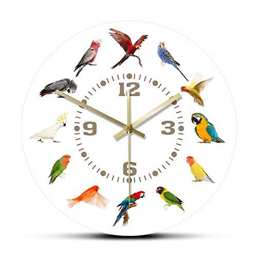 gongyu Colección de Razas de pájaros Reloj de Pared Moderno Sin tictac Reloj de Pared Loro Pájaro Especies de Mascotas Arte de Pared exótico Amantes de los pájaros Decoración del hogar