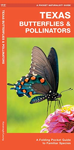 Texas Butterflies & Pollinators: A Folding Pocket Guide to Familiar Species (Wildlife and Nature Identification)