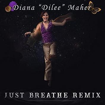 Just Breathe (Remix)