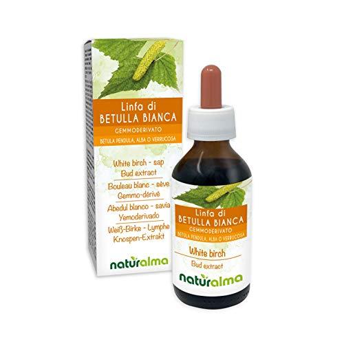 Bouleau blanc (Betula pendula, alba ou verrucosa) Gemmo-dérivé sans alcool à base de sève fraîche Naturalma | Extrait liquide gouttes 100 ml | Complément alimentaire | Végétalien ou végan