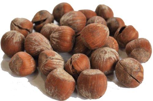 ヘーゼルナッツ 殻付き 1kg アメ横 大津屋 業務用 ドライ ナッツ ドライフルーツ 製菓材料 Hazelnut ハシバミ はしばみ 榛実