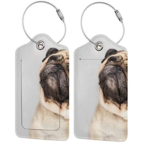 Funny Pug Dog Personalized Leather Luxury Suitcase Tag Set Travel Accessories Luggage Tags