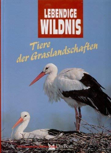 Lebendige Wildnis. Tiere der Graslandschaften. Termiten, Wildhunde, Gnus, Webervögel, Gabelböcke, Nasenbären, Störche, Pekaris.