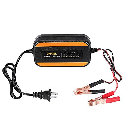 Frieed 1 2V 2.5A LED Cargador de batería de Pantalla de Potencia ZYX-Y10 para Calcio de Plomo-ácido. Gel AGM Mojado EFB Batería Durable (Color : EU Plug)