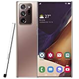 Sojare Smartphone Sbloccato 20U + 3G, Schermo LCD HD da 6,9 Pollici, Cellulare Dual SIM Dual Standby per Android 10.0, Memoria 6 + 64G, Fotocamera 1300W + 1600W, WiFi, GPS, Bluetooth - Bronzo(Bronzo)