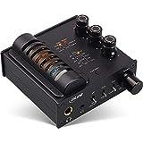 InLine 99207I AmpUSB-EQ - Amplificador de Tubo de Audio Hi-Fi DSD para Auriculares y Ecualizador, USB DAC