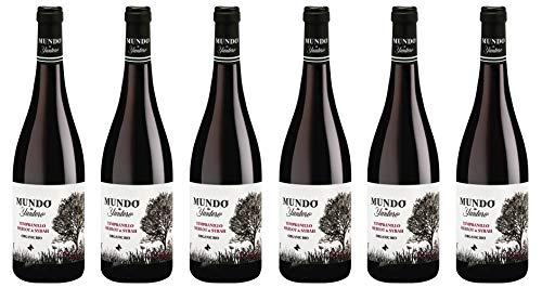 Bio Wein Rotwein Mundo de Yuntero tinto Cuvee Fruchtig Trocken Weinpaket La Mancha Spanien 2019 (6 x 0,75 l)