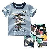 Baby Jungen Kleinkind Kinder Camouflage Outfits Set Sport Freizeit Babybekleidung Dinosaurier Drucken Kurzarm T-Shirt + Shorts (Blau, 90)