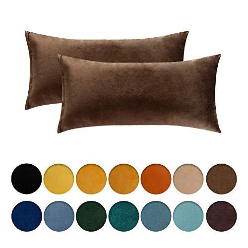 Soul hill Pack de 2 Terciopelo Suave Soild Funda de Almohada Microfibra Plaza Decorativa Throw Cojín for sofá del Dormitorio de Coche con la Cremallera Invisible 16x16 Pulgadas 40x40 cm Jam