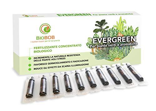 BIOBOB Evergreen - Concime Biologico per Piante Verdi e Aromatice anche Indoor - Kit salvaspazio per piante da fiore - Fertilizzante liquido