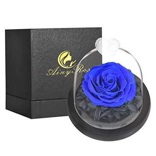 SW Blue Rose -Preserved Real Rose in Glass Dome Gift Eternal Flower,Beautiful Creative Heart Design a Gift for Valentine's Day Mother's Day Christmas Anniversary Birthday Thanksgiving (Blue)