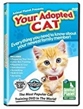 your adopted cat dvd