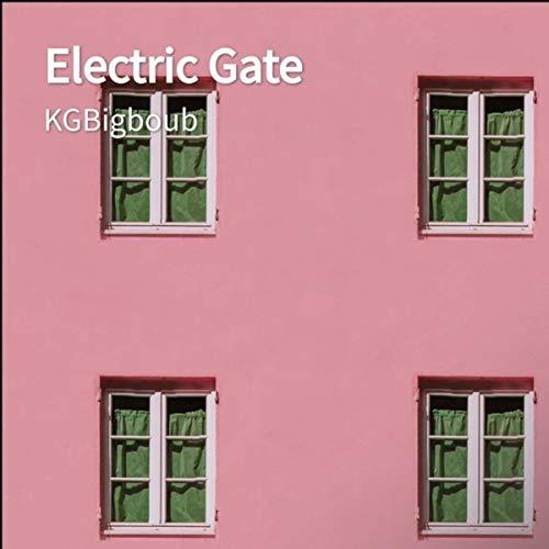 Electric Gate 4