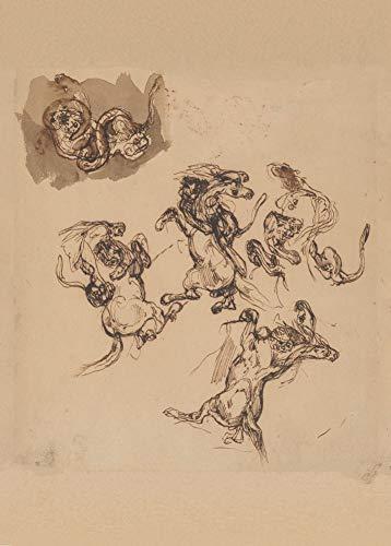 Eugène Delacroix 'Studies van een steigerend paard aangevallen door een leeuw; Een leeuw die worstelt met een slang', 1820-63, 250gsm Zacht-Satijn Laagglans Reproductie A3 Poster