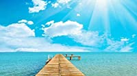 Bcbfgfdgbz クロスステッチキット刺繍キット DIY 手作り - 14CT プレプリント刺繡工芸品のフルレンジを初心者向けマルチカラーパターンスターターキット室内装飾40×50cm海の 青い空の 木橋
