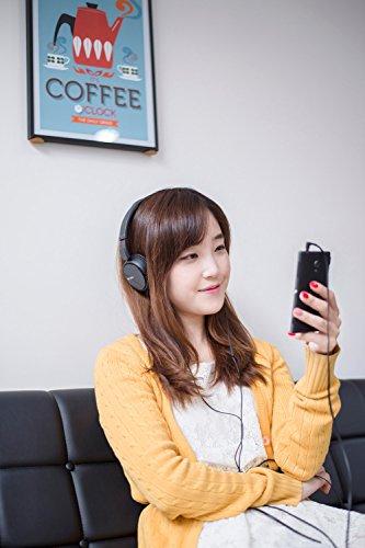 Sony MDR-ZX110AP faltbarer Bügelkopfhörer mit Headsetfunktion, schwarz