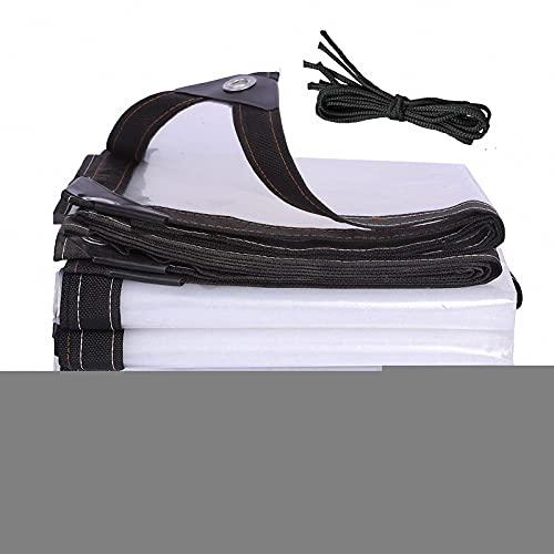 J&SKD Telone Impermeabile per Esterno Trasparente,Telo Impermeabile Esterno,Teloni Occhiellati per Esterno,Antipolvere Antipioggia Multiuso Polietilene Tenda da Balcone in Plastica per Esterni