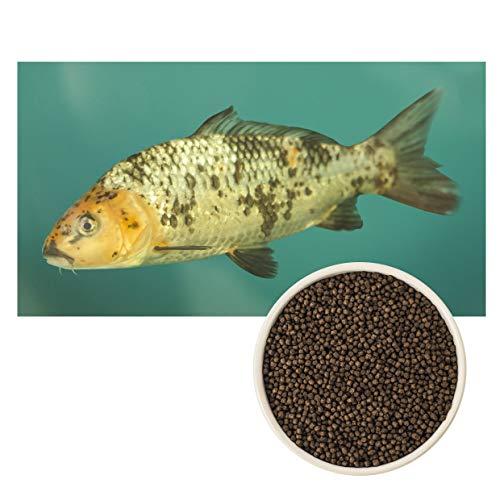 ULTRA KOI - Premium Futter SCHWIMMEND für Kois und Teichfische - Alleinfuttermittel für Fische Koifutter, Fischfutter Aquarium und Gartenteich - Palettes Granulat - Ganzjahresfutter- (3 mm, 1 kg)