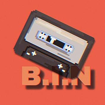 B.I.N