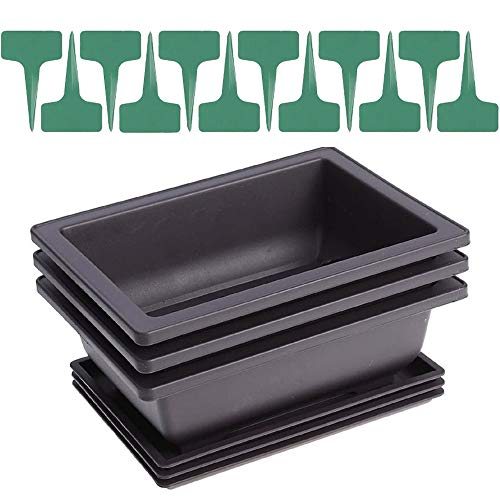 3 Packs 8.5 Inches Bonsai Training Pots with Trays, Come with 12pcs Plant Lables, Rectangle Bonsai Flower Growing Nursery Planter Pots for Indoor Outdoor Home Garden, Black