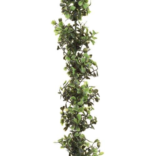 Unbekannt Buchsbaumgirlande ca 150 cm. Buchs - Girlande, Ranke.