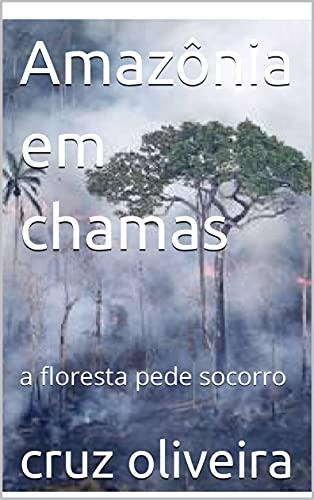 Amazônia em chamas: a floresta pede socorro