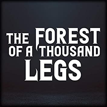 The Forest of a Thousand Legs