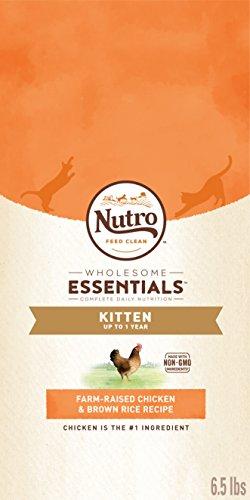 Nutro Wholesome Essentials Kitten Dry Cat Food Farm-Raised Chicken & Brown Rice Recipe