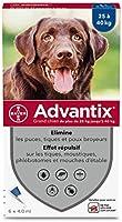 ADVANTIX Grand Chien – Anti-Puces et Anti-Tiques – 25-40KG – 6 Pipettes