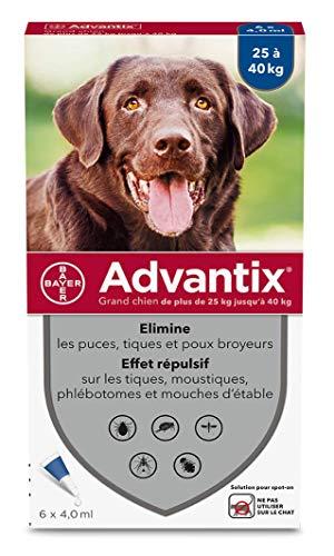 ADVANTIX Grand Chien – Anti-Puces et Anti-Tiques –...