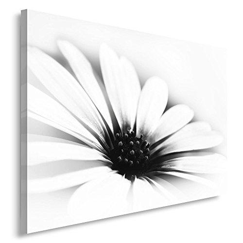 Feeby. Cuadro en Lienzo - 1 Parte - 80x120 cm, Imagen impresión Pintura decoración Cuadros de una...