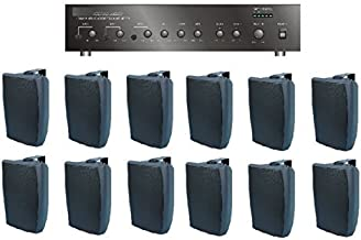 Large Restaurant/Bar/Retail Store Business Background Music Sound System- Amp, 12 Surface Speakers +