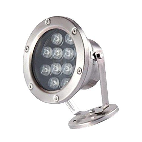 12W LED Unterwasser Beleuchtung Aquariumlampe Teichlampe Teichstrahler für Schwimmbad Teich Aquarium Springbrunnen, IP 68 wasserdicht - Warmweiß