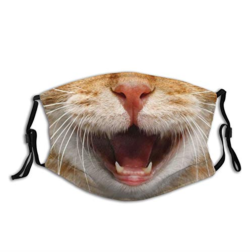 The perfect face mask for cat lovers