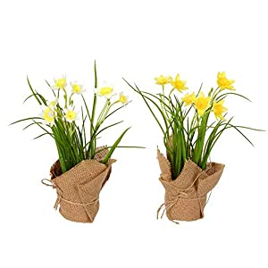 Vickerman 10″ Yellow Daffodil in Burlap Pot. Artificial-Flowers, Green