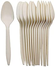 """GreenWorks Eco-Friendly 5.8"""" Plant Starch Disposable Cutlery Spoons,1000 Count Cornstarch Biodegradable Spoons"""