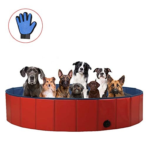 ZEHNHASE Piscina para Mascotas Plegable, PVC Antideslizante y Resistente al Desgaste Piscina para Perros, Adecuado para Niños/Mascotas Perros (XL:160x30CM)
