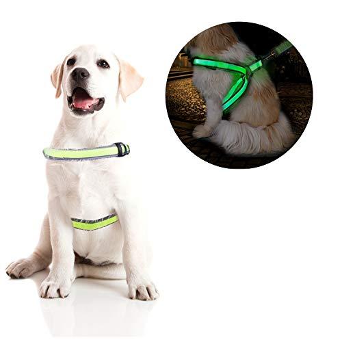OBloved Dog Harness,LED Dog Vest USB Rechargeable Reflective Harness, Adjustable Lightweight Pet Vest for Large Medium Small Dogs, S Size