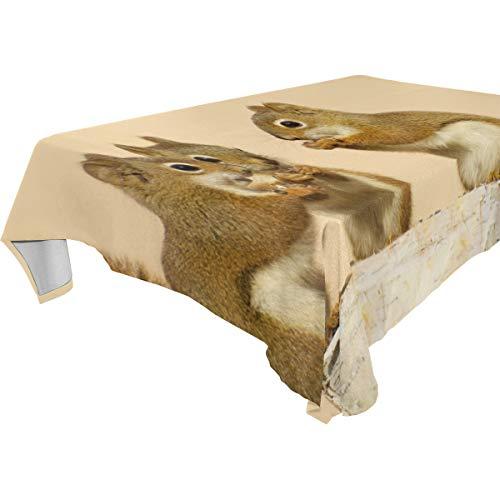 TIZORAX Baby Eekhoorns Delen Zonnebloemen Zaden Op Berk Log Wasbaar Polyester Tafelkleed Tafelkleed voor Keuken Eetkamer Feesten Bruiloft, 54