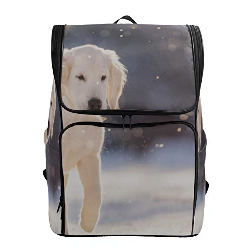 Happy Golden Retriever Sitting Outdoors Best Bookbag Travel Cooler Bag Crossbody Backpack For Women School Bags For College Fits 15.6 Inch Laptop And Notebook Teen Daypack Sports Bag For Boys