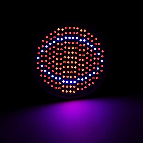 Zhjvihx Bombillas de Espectro Completo, LED Grow Light, 24W Grow Light para Plantas de Flores