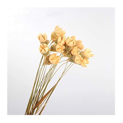 HAHADONG Ramo de Flores secas, Muebles para el hogar, pequeña Sala de Estar Fresca, arreglo Floral, Adornos Rojos Netos, gypsophila, S