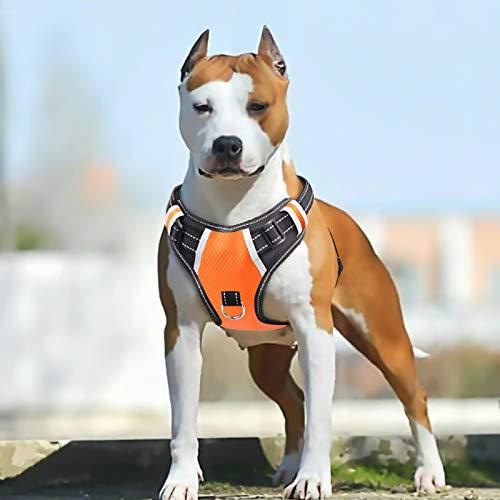 PENGDA No Pull Hundegeschirr Große Hund Geschirr fürs Auto Verstellbarem Griff, reflektierendem, atmungsaktivem Netz, Outdoor Training Spaziergänge. Leichtgewichtig, einfache Handhabung – Orange L